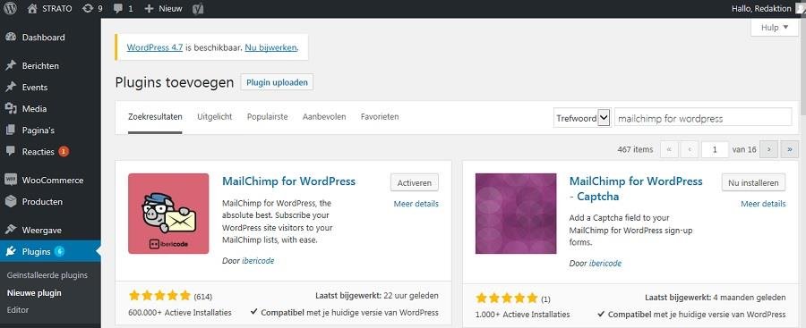 Newsletter Plugin voor WordPress