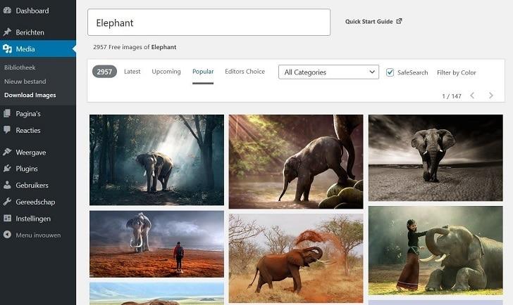 Plug-in Pixabay: gratis afbeeldingen van Pixabay direct bij de hand.
