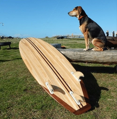 Een surfplank van Mioboards