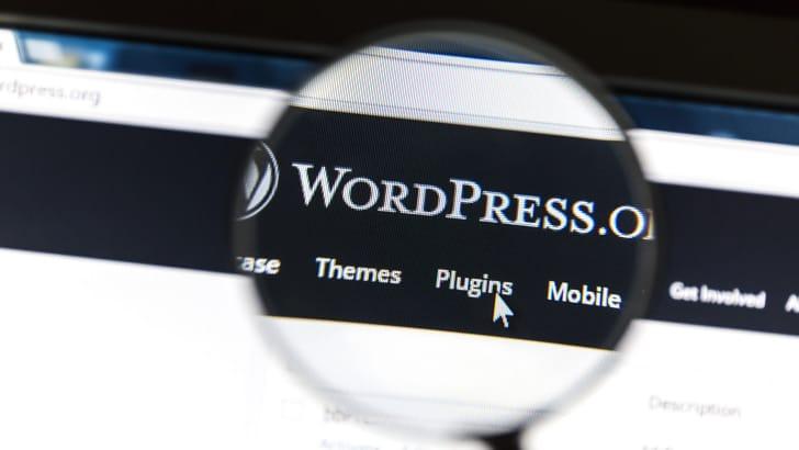 wordpress-themes-en-plug-ins-in-het-nederlands-vertalen